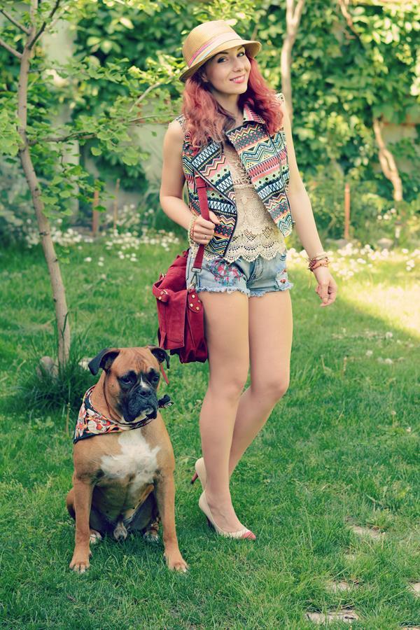 boxer dog pet