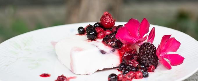 easy youghurt protein icecream