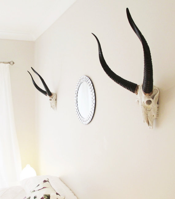 animal skull faux home deco